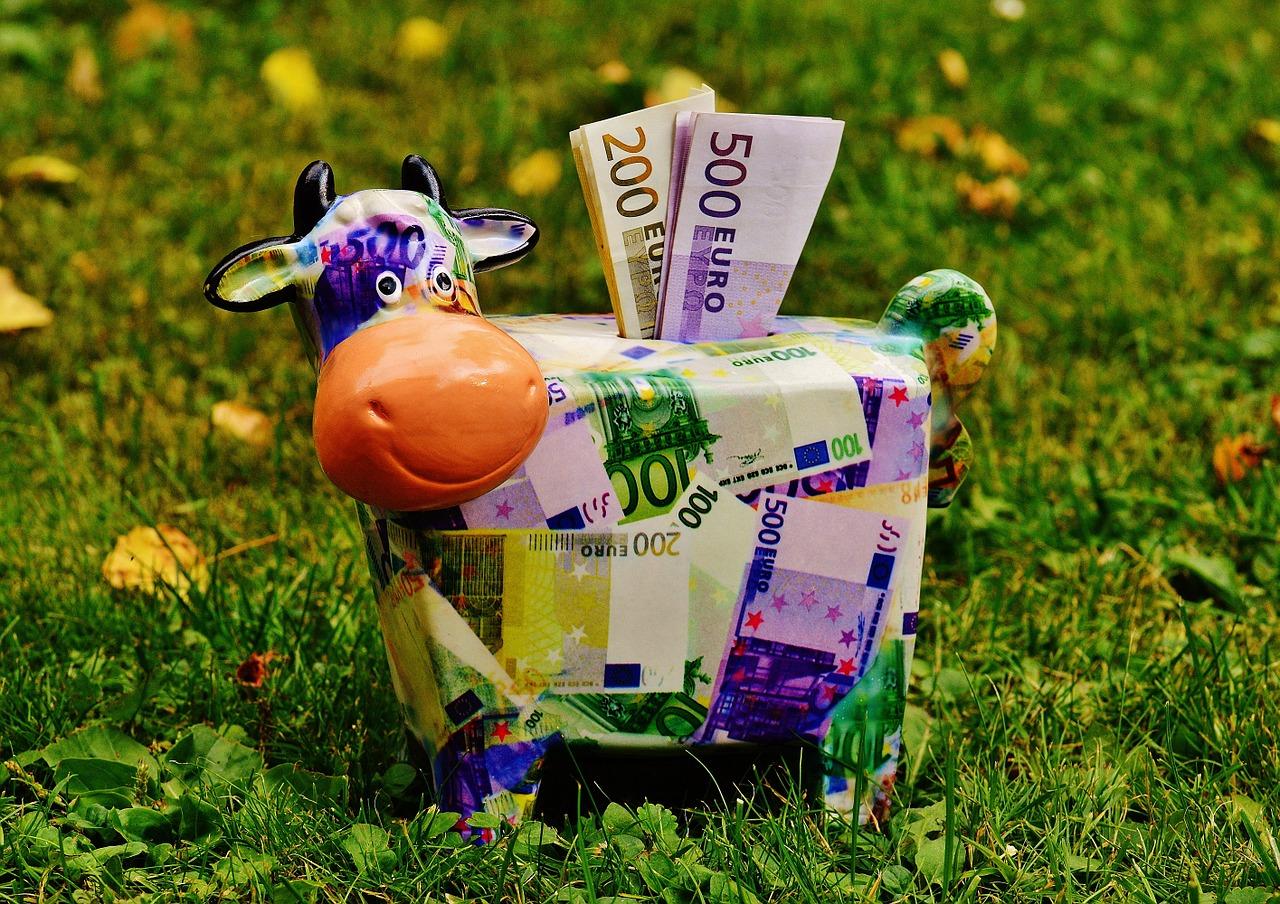 Déclaration des revenus 2010 Autoentrepreneur