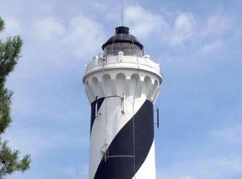 Le phare de Contis : vue imprenable sur l'océan et la forêt des Landes