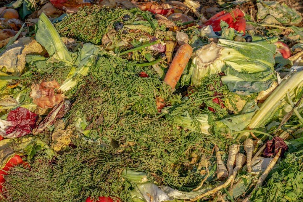 Le compost est écologique